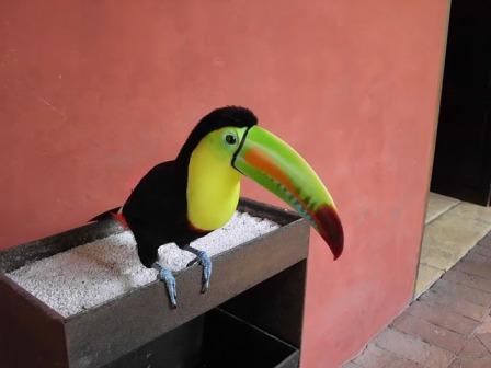 Cartagena_2011_0191