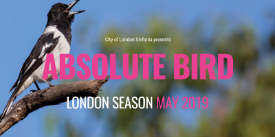 CLS presents Absolute Bird